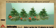 4 christmas trees with winter flowers 21 plants in total copy