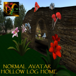SF Hollow Log Home NORMAL